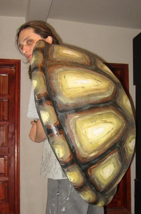 kornjaca-2